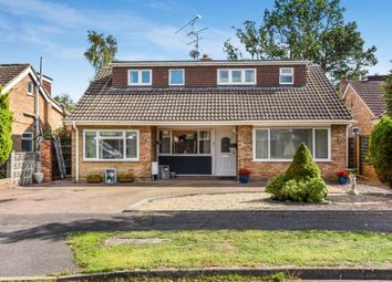 Thumbnail 4 bed detached bungalow for sale in Blackwater, Camberley