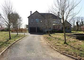 Thumbnail 4 bed detached house for sale in Curraghtown, Moynalty, Kells, Co. Meath
