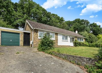 Thumbnail 3 bed detached bungalow to rent in Fernhill Close, Woking