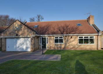 Thumbnail 4 bed bungalow for sale in Plantation Road, Redcar, North Yorkshire