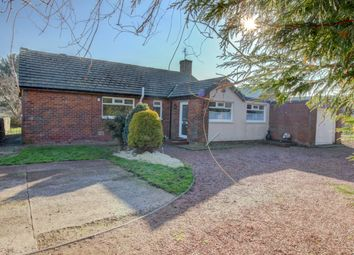 Thumbnail 3 bed bungalow for sale in Red Row, Morpeth