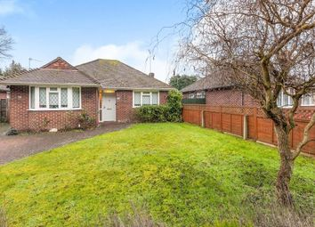 Thumbnail 3 bed bungalow for sale in New Haw, Addlestone, Surrey