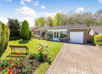 Thumbnail 4 bed bungalow for sale in Jenison Close, School Aycliffe, Newton Aycliffe, County Durham