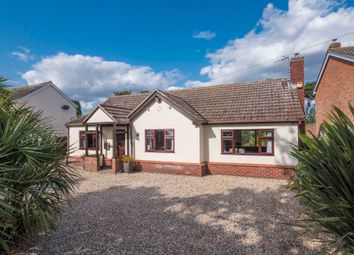 4 bed detached bungalow for sale in Great Horkesley, Colchester, Essex CO6
