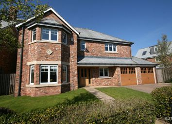 Thumbnail 5 bedroom detached house for sale in Westhouse Avenue, Potters Bank, Durham