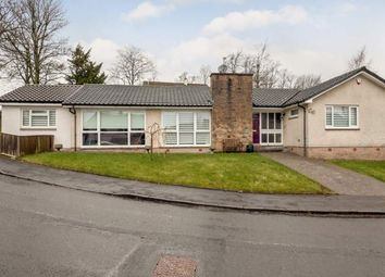 Thumbnail 4 bed detached house for sale in The Beeches, Brookfield, Johnstone