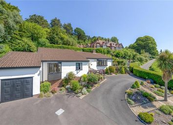 Thumbnail 4 bed detached bungalow for sale in St. Michaels Road, Minehead
