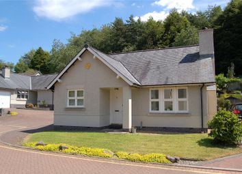 Thumbnail 2 bed detached bungalow to rent in 42 Kirkbie Green, Kendal, Cumbria