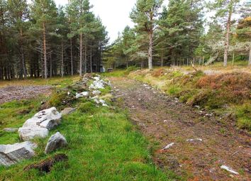 Thumbnail Land for sale in Abriachan, Inverness
