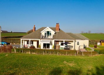 Thumbnail 4 bed bungalow for sale in Gwynfe, Llangadog