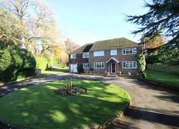Thumbnail 6 bed detached house for sale in Red Hill, Medstead, Alton, Hampshire