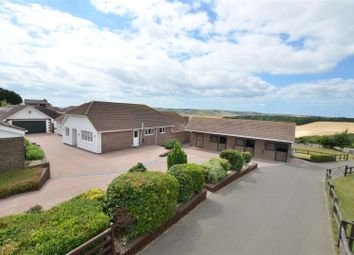 Thumbnail 5 bed equestrian property for sale in The Old Racecourse, Lewes