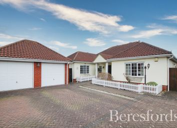 Thumbnail Detached bungalow for sale in Harvest Close, Marks Tey, Colchester, Essex