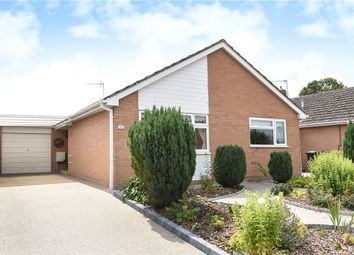 Thumbnail 2 bed detached bungalow for sale in Wetherby Close, Milborne St. Andrew, Blandford Forum, Dorset