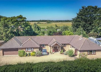 Thumbnail 4 bed detached bungalow for sale in Greatford Road, Baston, Market Deeping, Lincolnshire
