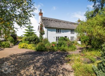 Thumbnail 3 bed cottage for sale in Squires Road, Halvergate, Norwich
