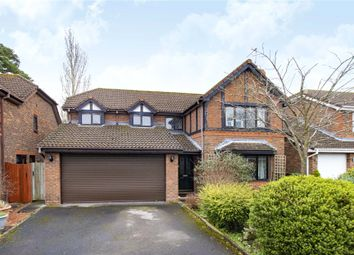 Thumbnail 4 bed detached house for sale in Saxon Drive, Warfield, Berkshire