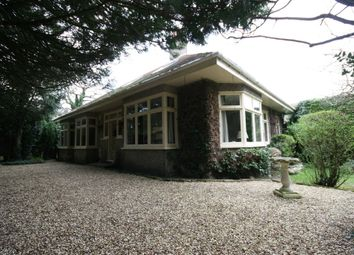 Thumbnail 5 bedroom detached bungalow for sale in Watcombe Road, Southbourne, Bournemouth