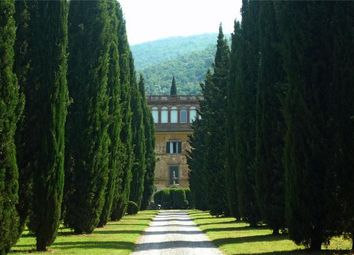 Thumbnail 16 bed property for sale in Villa Fontana, Cortona, Arezzo, Tuscany