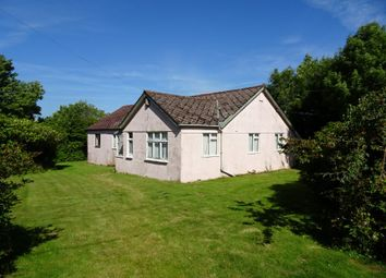 Thumbnail 4 bed detached bungalow for sale in Rew Meadow, Belstone, Okehampton, Devon