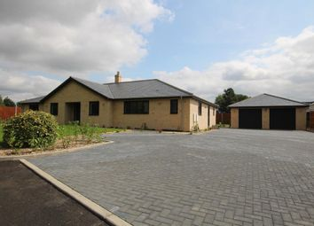 Thumbnail 5 bedroom detached bungalow for sale in Cathedral View Park, Witchford, Ely