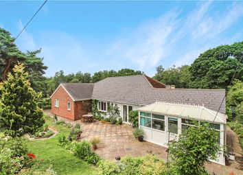 Thumbnail 4 bed detached bungalow for sale in Whitegate, Forton, Chard