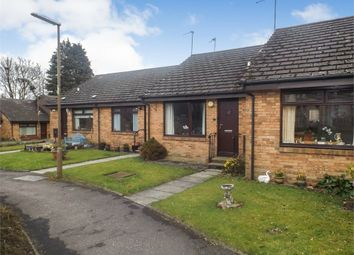 Thumbnail 1 bed terraced bungalow for sale in Springbank Gardens, Falkirk