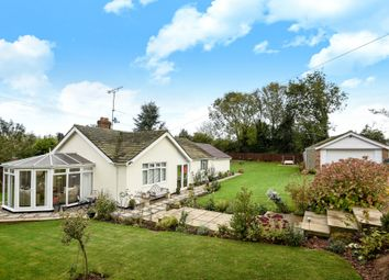 Thumbnail 4 bedroom detached bungalow for sale in Rectory Road, Edgefield, Melton Constable