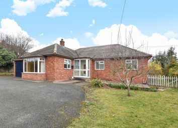 Thumbnail 4 bedroom bungalow for sale in Beulah, Moreton Road, Lyde, Hereford
