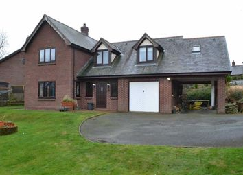 Thumbnail 3 bed detached house for sale in 5, Parc Llwyn, Llanidloes, Powys