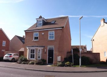 Thumbnail 4 bed detached house for sale in Exmoor Avenue, Biggleswade, Bedfordshire