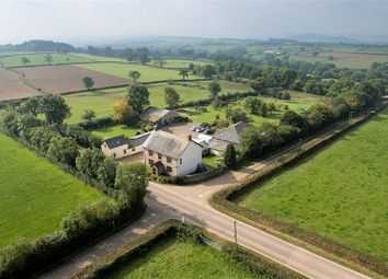 Thumbnail 4 bed detached house for sale in Stockland, Honiton, Devon