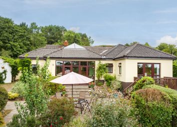 Thumbnail 4 bed detached bungalow for sale in Coolballow, Wexford Town, Wexford County, Leinster, Ireland