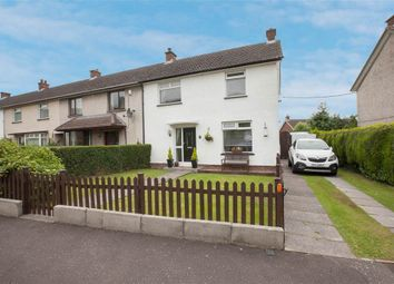 Thumbnail 3 bed terraced house for sale in 24, Palace Grove, Holywood