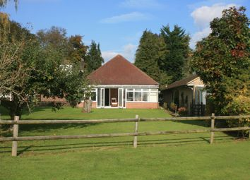 Thumbnail 2 bed detached bungalow to rent in Southwick Road, North Boarhunt, Fareham