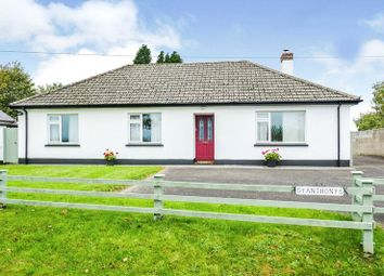 Thumbnail 4 bed bungalow for sale in Winterland Lane, Holsworthy