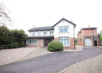 Thumbnail 4 bed detached house to rent in The Flats, Rashee Road, Ballyclare