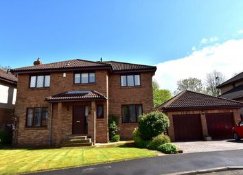 Thumbnail 4 bed detached house for sale in 37 Pleasance Brae, Cairneyhill