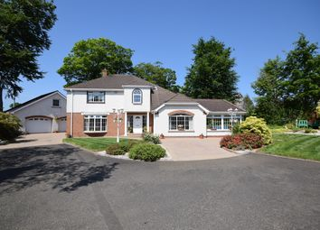 Thumbnail 4 bed detached house for sale in Ashbrook Park, Limavady