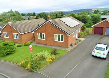 Thumbnail 3 bedroom bungalow to rent in 7, The Ridge, Bishops Castle, Shropshire