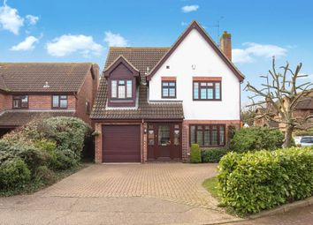 Thumbnail 4 bed detached house for sale in Wakes Colne, Wickford, Essex