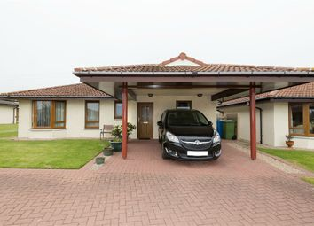 Thumbnail 2 bed detached bungalow for sale in Highland Park, Invergordon, Highland