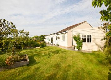 Thumbnail 5 bedroom detached bungalow for sale in Scotred Close, Burwell, Cambridge