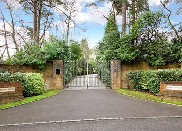 Thumbnail 5 bedroom detached house for sale in Westwood Road, Windlesham, Surrey