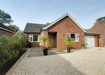 Thumbnail 4 bed detached house for sale in Chapel Lane, Long Marston, Tring
