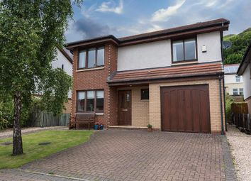 Thumbnail 4 bed detached house for sale in Clifford Park, Menstrie