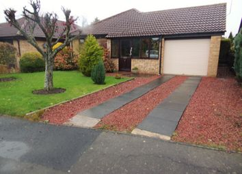 Thumbnail 2 bed bungalow for sale in Benlaw Grove, Felton, Morpeth