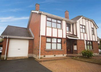 Thumbnail 3 bed semi-detached house for sale in Hermitage, Hillsborough, County Antrim
