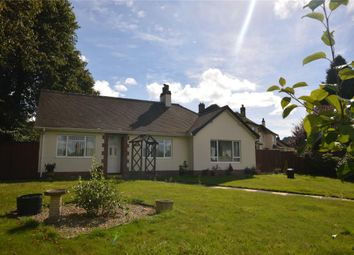 Thumbnail 3 bed detached bungalow for sale in Sidmouth Road, Honiton, Devon