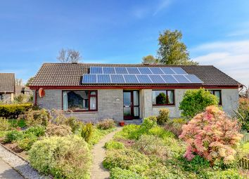 Thumbnail 4 bed bungalow for sale in Maidland Place, Wigtown, Newton Stewart
